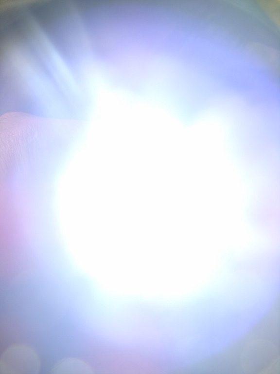 dsc04586